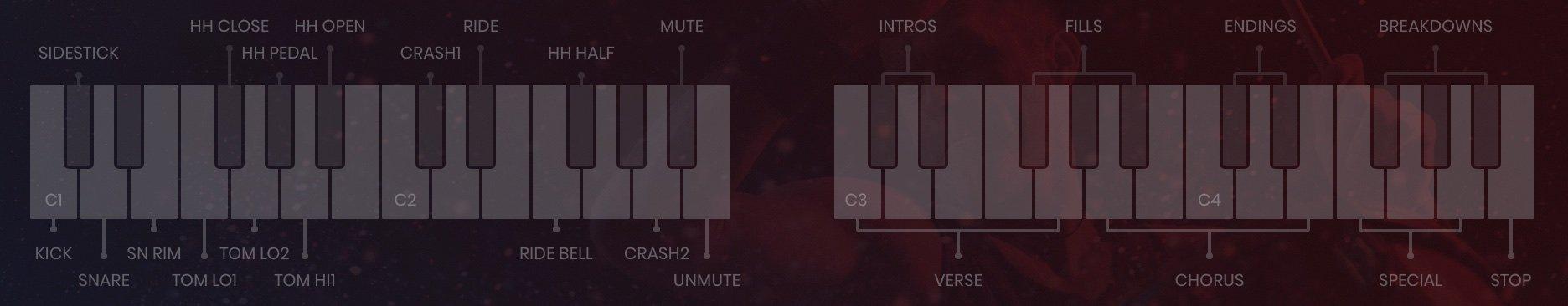 UJAM Virtual Drummer: Batterie Virtuali pronte all'uso