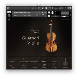 Cremona Quartet - Guarneri Violin